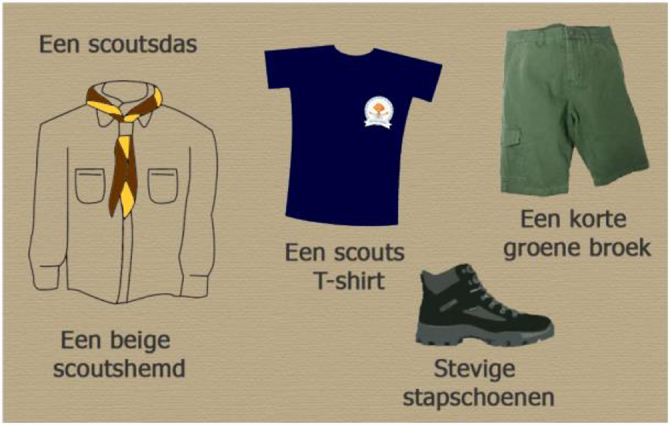 overzicht uniform